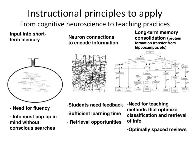 Instructional principles to apply