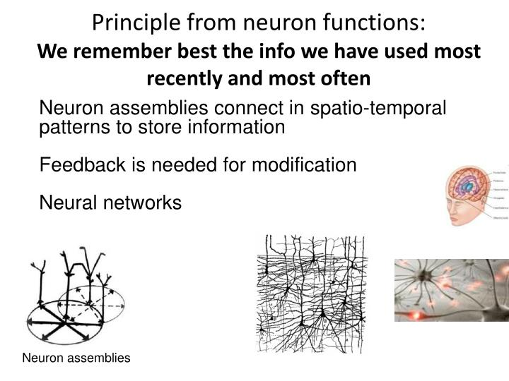Principle from neuron functions: