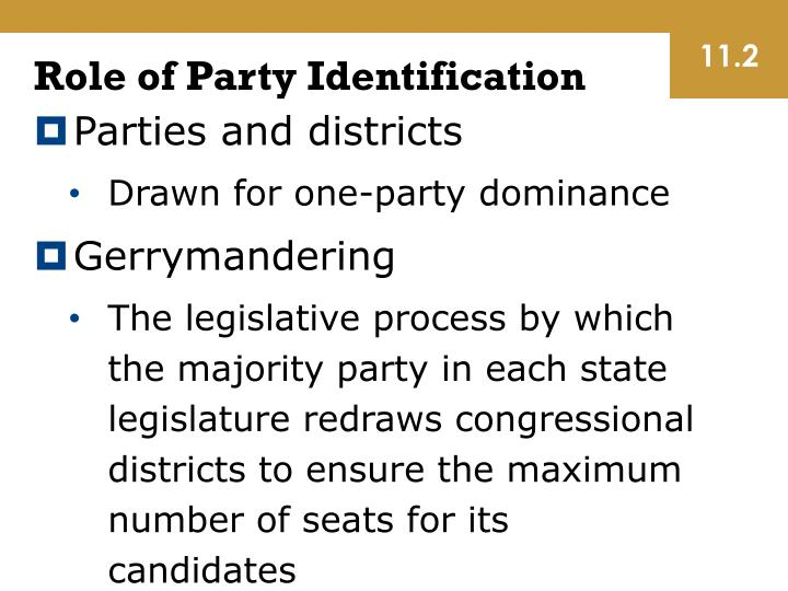 Role of Party Identification