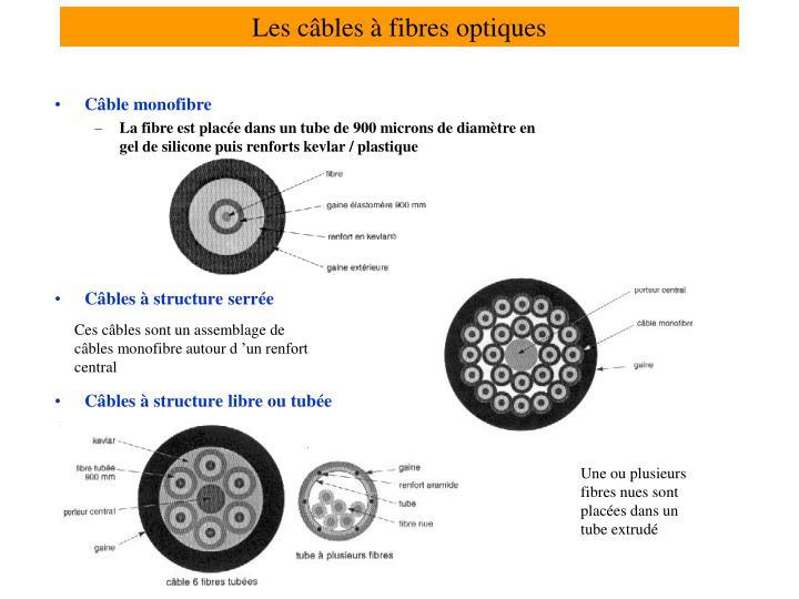Les câbles à fibres optiques