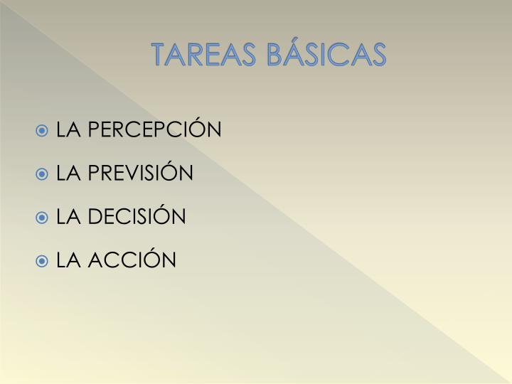 TAREAS BÁSICAS
