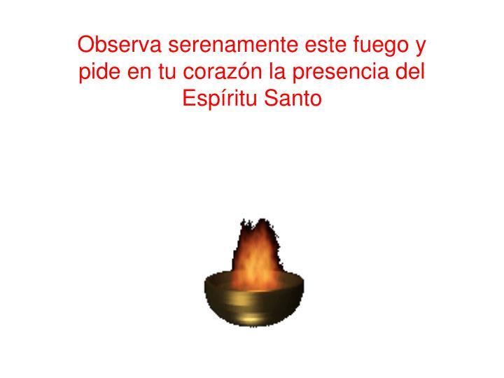Observa serenamente este fuego y pide en tu corazón la presencia del Espíritu Santo