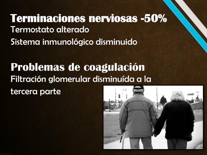 Terminaciones nerviosas -50%