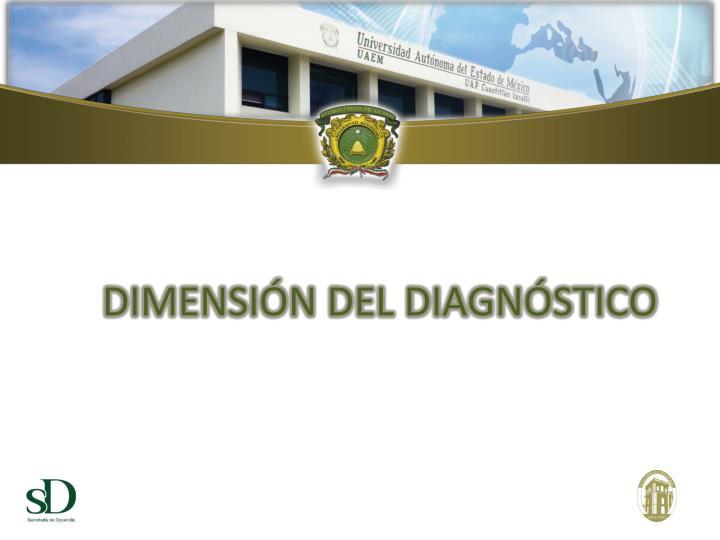 DIMENSIÓN DEL DIAGNÓSTICO
