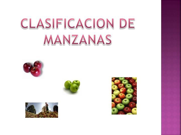 CLASIFICACION DE MANZANAS