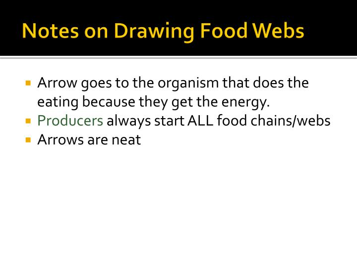 Notes on Drawing Food Webs