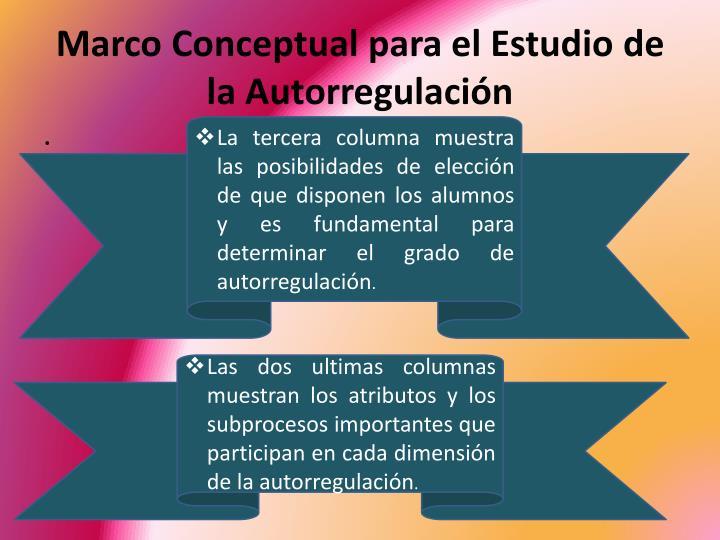 Marco Conceptual para el Estudio de la Autorregulación