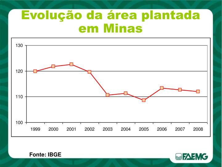 Evolução da área plantada em Minas