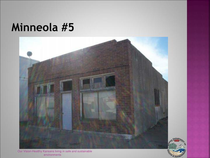 Minneola #5
