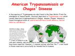 american trypanosomiasis or chagas disease