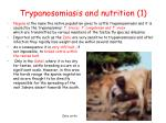 trypanosomiasis and nutrition 1