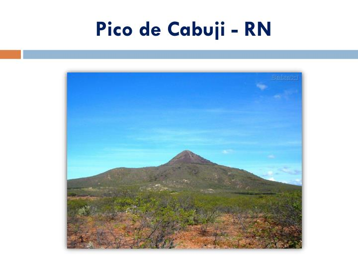 Pico de