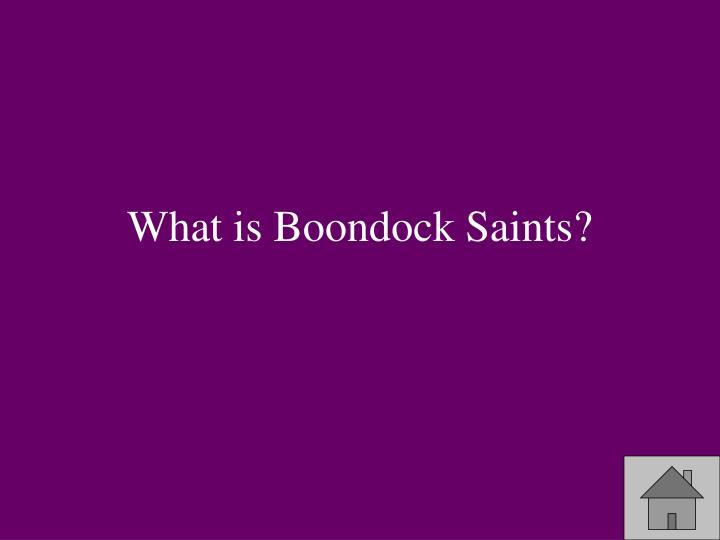 What is Boondock Saints?