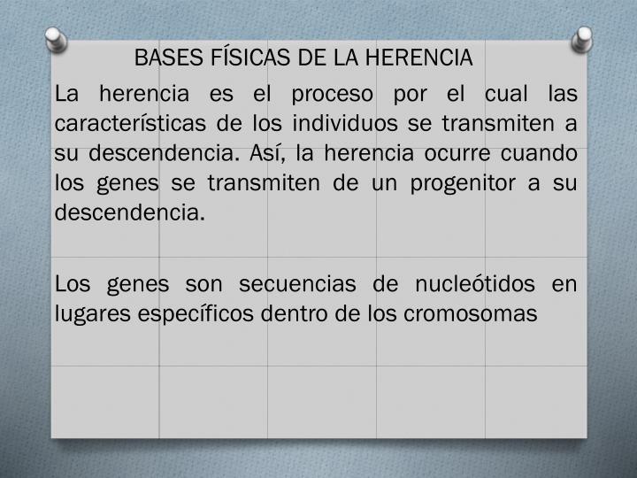 BASES FÍSICAS DE LA