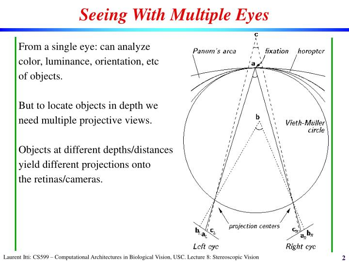 Seeing With Multiple Eyes