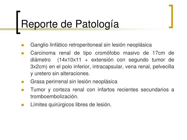 Reporte de Patología
