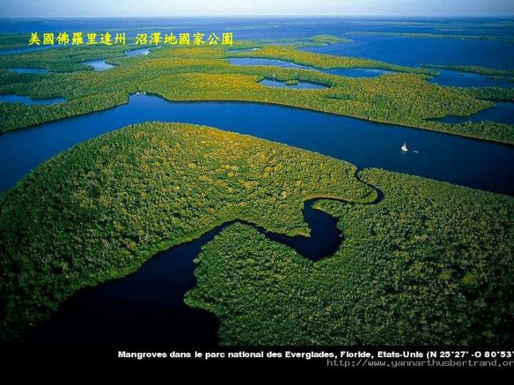 美國佛羅里達州 沼澤地國家公園