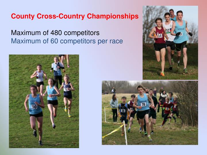 County Cross-Country Championships