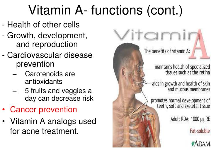 Vitamin A- functions (cont.)