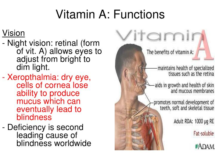 Vitamin A: Functions
