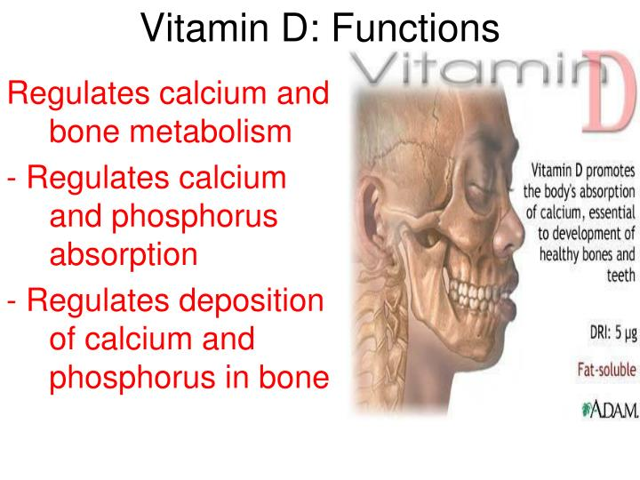 Vitamin D: Functions