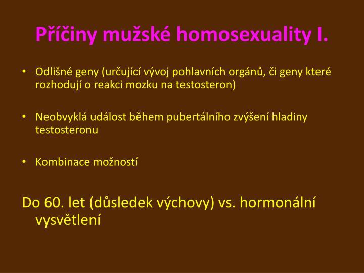 Příčiny mužské homosexuality I.