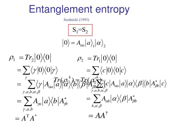 Entanglement entropy