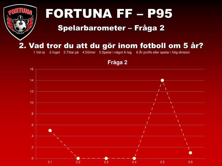 FORTUNA FF – P95