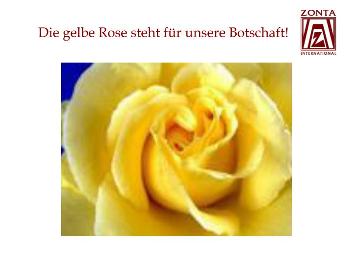 Die gelbe Rose steht für unsere Botschaft!