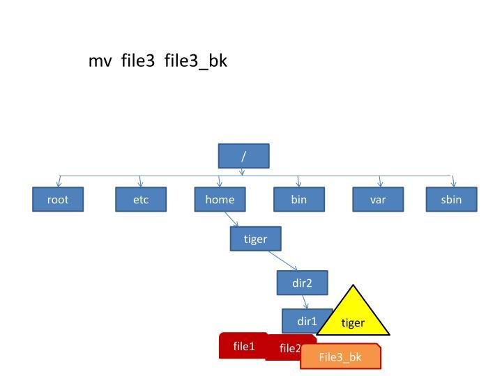 mv  file3  file3_bk