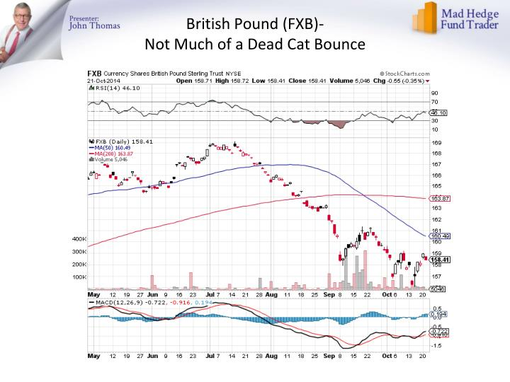 British Pound (FXB