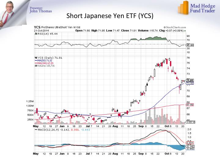 Short Japanese Yen ETF (YCS)