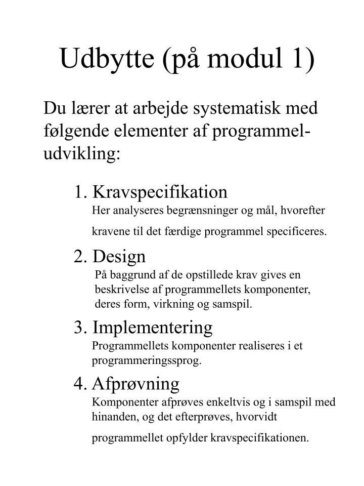 Udbytte (på modul 1)