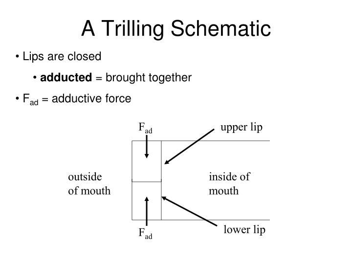 A Trilling Schematic