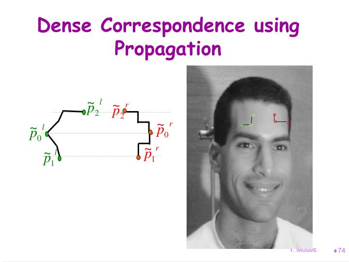 Dense Correspondence using Propagation
