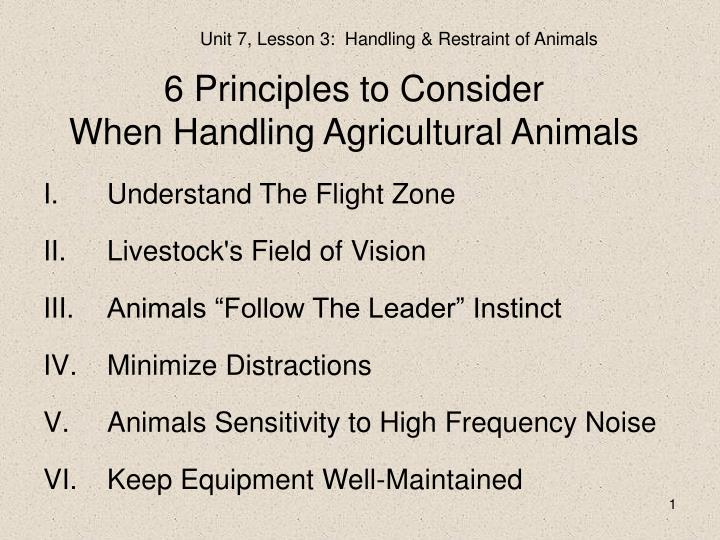 6 Principles to Consider