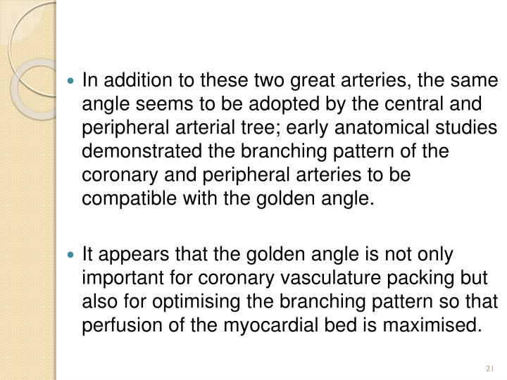 In addition to these two great arteries, the same angle seems to be adopted by the central and peripheral arterial tree; early anatomical studies demonstrated the branching pattern of the coronary and peripheral arteries to be compatible with the golden angle.
