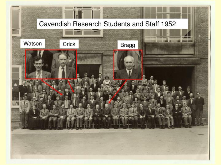 Cavendish Research Students and Staff 1952