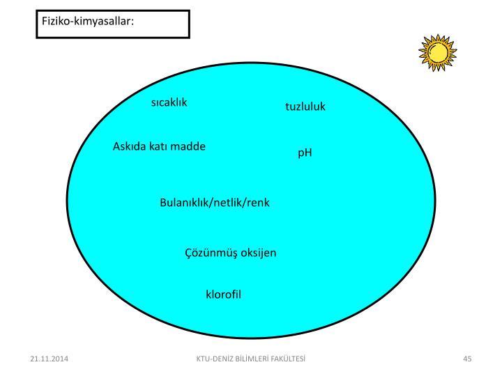 Fiziko-kimyasallar: