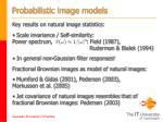 probabilistic image models