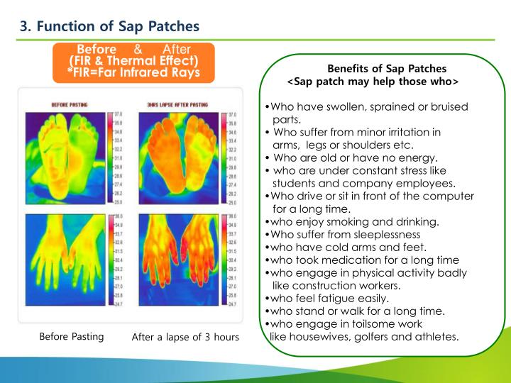3. Function of Sap Patches