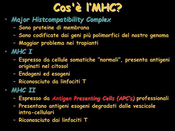Cos'è l'MHC?