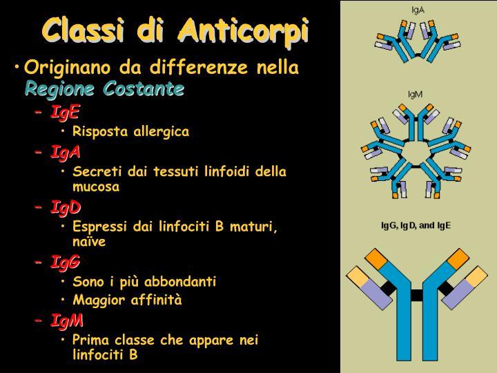Classi di Anticorpi