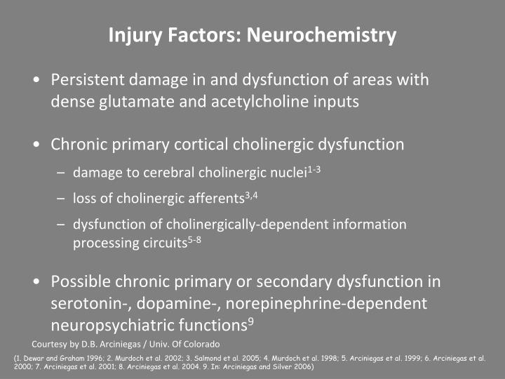 Injury Factors: Neurochemistry
