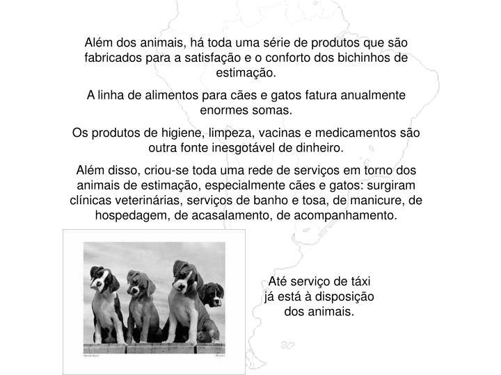 Além dos animais, há toda uma série de produtos que são fabricados para a satisfação e o conforto dos bichinhos de estimação.