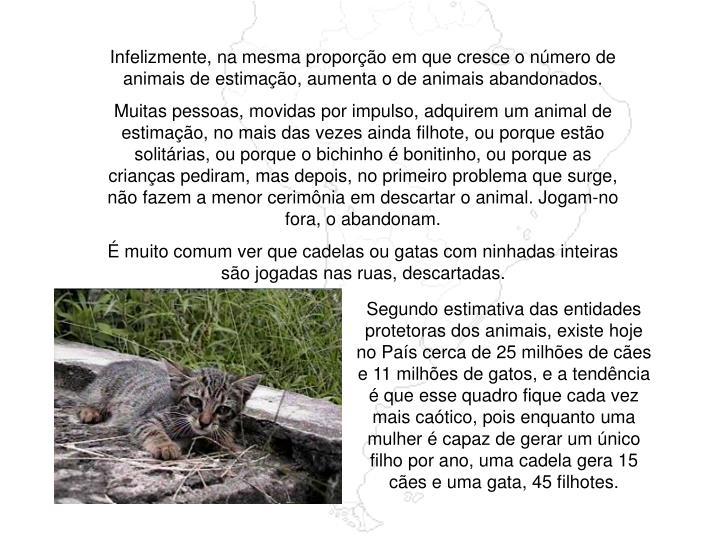 Infelizmente, na mesma proporção em que cresce o número de animais de estimação, aumenta o de animais abandonados.