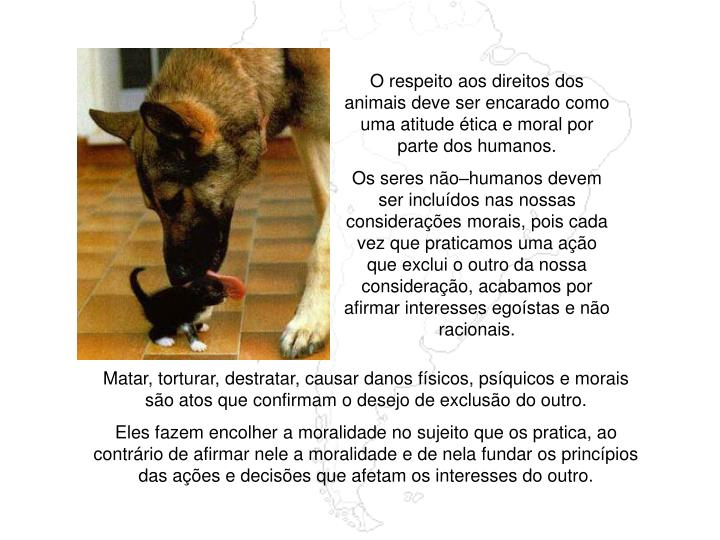 O respeito aos direitos dos animais deve ser encarado como uma atitude ética e moral por parte dos humanos.
