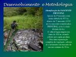 desenvolvimento e metodologia2