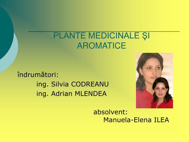 PLANTE MEDICINALE ŞI AROMATICE
