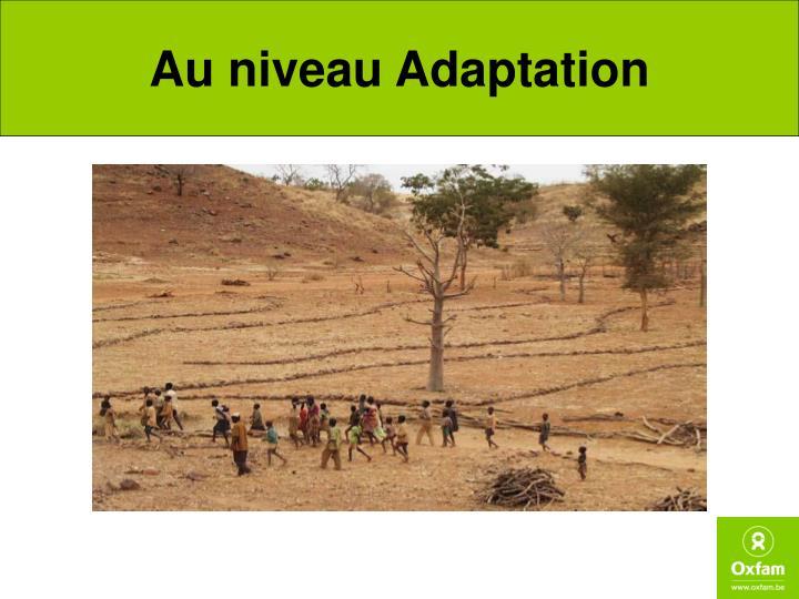 Au niveau Adaptation